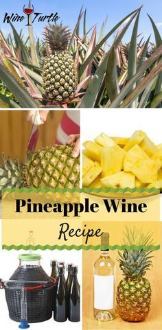A Delicious Pineapple Wine Recipe You Should Try [Full Instructions Included] Looking for a refreshing pineapple wine recipe? Check this out! Homemade Wine Recipes, Homemade Alcohol, Homemade Liquor, Beer Recipes, Brewing Recipes, Alcohol Recipes, Drink Recipes, Recipies, Sangria Wine