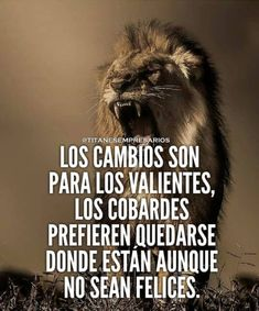 La imagen puede contener: meme y texto Motivational Phrases, Inspirational Quotes, Mi Images, Wedding Dresses For Kids, Millionaire Quotes, Smart Quotes, Lessons Learned In Life, The Ugly Truth, Empowering Quotes