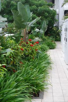 Nice landscape design, perennials, flowers Franchesca Watson | Garden Designer