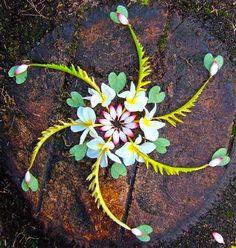 Flower mandalas by Kathy Klein - BOOOOOOOM! - CREATE * INSPIRE * COMMUNITY * ART * DESIGN * MUSIC * FILM * PHOTO * PROJECTS
