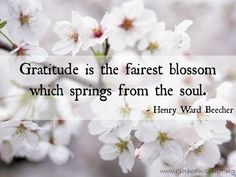 """Gratitude is the fairest blossom which springs from the soul."" - Henry Ward Beecher #Quotes"