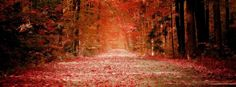 facebook cover photos fall autumn - Google Search