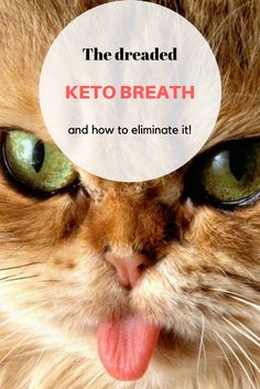 Keto breath can be nasty. The keto (low carb, LCHF) diet isn't all bacon, weight loss and happiness. One of the side effects can be keto breath. Ketogenic Diet Food List, Ketogenic Lifestyle, Lchf Diet, Macros, Keto Breath, Bad Breath, Keto Diet Side Effects, Keto Calculator, Keto Flu