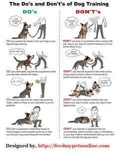 Do's and Don't's of Dog Training..     Training a dog is all about cooperation, patience, and understanding (not force, fear, or dominance). What better way to illustrate this than with this helpful.