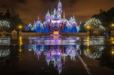 A Guide To Christmas At Disneyland 2016 - The Bucket List Narratives