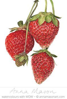 "Strawberries Everest © 2007 ~ annamasonart.com ~ 31 x 41 cm (12"" x 16"")"