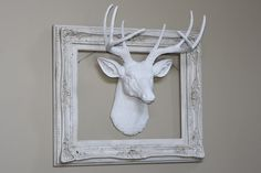 framed stag head - Google Search