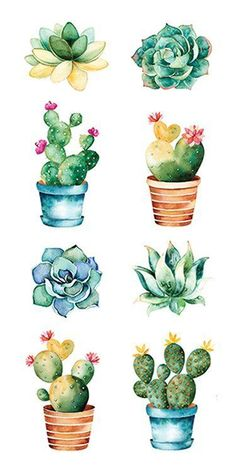 Paper House Productions - Cardstock Stickers - Succulents - - Garden Care, Garden Design and Gardening Supplies Succulents Drawing, Cactus Drawing, Cactus Painting, Watercolor Succulents, Cactus Art, Cactus Flower, Cacti And Succulents, Cactus Plants, Indoor Cactus