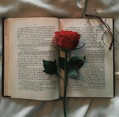 Image uploaded by Lucian. Find images and videos about vintage, aesthetic and flowers on We Heart It - the app to get lost in what you love. Aesthetic Roses, Book Aesthetic, Red Aesthetic, Aesthetic Photo, Aesthetic Pictures, Book Wallpaper, Tumblr Wallpaper, Flower Wallpaper, Wallpaper Backgrounds