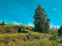 The Big Bad Helsinki Island Hopping Guide: How to Discover Helsinki Archipelago in 1 Day - A Finn On The Loose 1 Day, Archipelago, List, Helsinki, Day Trips, Finland, Golf Courses, Tours, Amazing