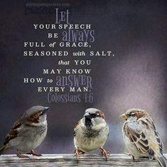 Colossians 1:6