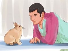 How to Play With Your Rabbit: 9 Steps (with Pictures) - wikiHow