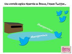 Ça twitte en #Berryprovince... mais aussi en #Brenne ;-)