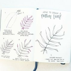 I am SO excited for this week's tutorial. I've teamed up with @inkbyjeng (go follow her right now!) to show you how we each draw a palm leaf. Swipe to see each one. The tutorials are so similar but so different all at the same time! Have fun drawing and have an awesome weekend.