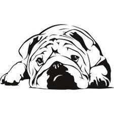 Image result for english bulldog line drawing