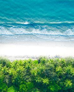 Tropical paradise, Port Douglas, Australia – primary On Perth, Brisbane, Melbourne, Bd Design, Paradis Tropical, Destinations, Next Holiday, National Photography, Tropical Paradise