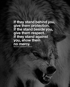 #insperation #wolves #are #amazing Wise Quotes, Great Quotes, Words Quotes, Motivational Quotes, Inspirational Quotes, Sayings, Lone Wolf Quotes, Wolf Pack Quotes, Warrior Quotes
