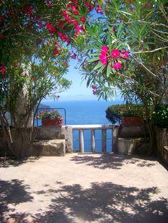Ravello: Summer in Ravello, Italy