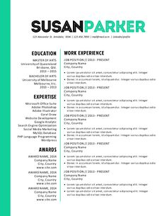 The Best Resume Templates    O T H E R S