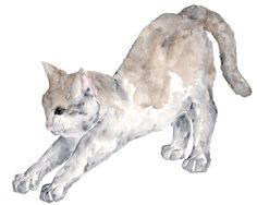 Cat watercolor painting, cat art, cats, watercolor animals, original painting, grey, stretching cat, white - 10X8 painting