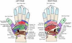 Pressure Points on the hands and how they are connected to the other systems in our body.