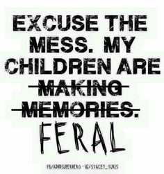 Excuse the mess my children are making memories - I mean Feral! Lol