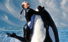 <p>Following the vote by the California Coastal Commission, SeaWorld shares dropped 93 cents, or 4.86 percent, to $19.19. Now here is why SeaWorld shareholders need to jump off this sinking ship.</p>