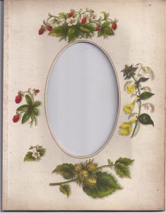 Page (Mat) from Victorian Photograph Album, CDV, Strawberries