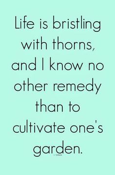 Life is bristling with thorns, and I know no other remedy than to cultivate one's garden | Inspirational Quotes