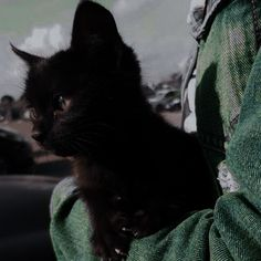 Black Cat Aesthetic, Old Gas Stations, Slytherin Aesthetic, She Wolf, Black Characters, Little Babies, Aesthetic Pictures, Hogwarts, Cute Animals
