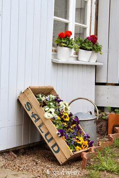 neues vom Hühnerhaus * some new from my chicken house Dekoblog, Gardening, Pansies, Chicken, Outdoor Decor, House, Furniture, Home Decor, Gardens