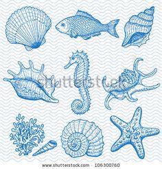 Sea collection. Original hand drawn illustration in vintage style by Elena Terletskaya, via Shutterstock