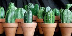 Amazing pebble art by Michela Bufalini - Small Potted Stone Cactus Plants :)
