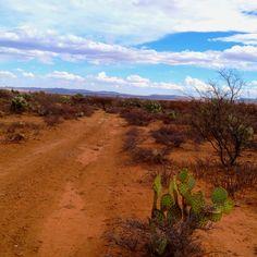 Monte Mariana Fresnillo, el lugar, en #Zacatecas, #Mexico, en donde puedes vivir cientos de aventuras.