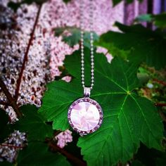 #MiMoneda #obsesion#adiction#love #new#coin#pink#so#inlove#fashion#jewellery #sterlingsilver#leaves#green#garden#