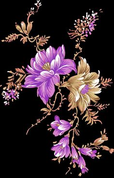 Flower Art Images, Flower Pictures, Botanical Flowers, Flowers Nature, Indian Flowers, Beautiful Flowers Wallpapers, Islamic Art Calligraphy, Botanical Drawings, Floral Border