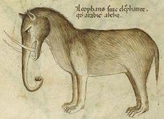 Слоны средневековья. | Efrem2Efrem