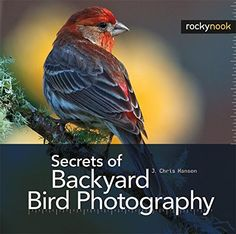 "Read ""Secrets of Backyard Bird Photography"" by J. Chris Hansen available from Rakuten Kobo. Photographing birds in your backyard is a convenient, rewarding, and addictive adventure. Secrets of Backyard Bird Photo. Levitation Photography, Water Photography, Book Photography, Exposure Photography, Abstract Photography, Book Club Snacks, Funny Blogs, Experimental Photography, How To Attract Birds"