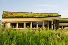 A fantastic gallery featuring 25 Amazing Buildings with Green Roof Designs, also known as living roofs. These spectacular rooftops feature lawns, gardens, and beyond. Roof Plants, Green Roof Benefits, Bali, Diy Roofing, Roofing Options, Agricultural Buildings, Living Roofs, Living Walls, Roof Architecture