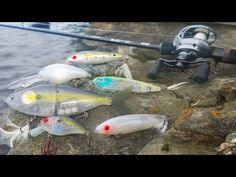 Fishing for Bass with Electronic Lures! - Canada (Livingston Lures) - YouTube