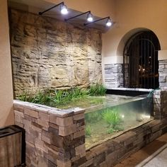 Why not have both! It's a pond and an aquarium on the patio of this home in Texas. All filtration and heating is remotely placed. Completed photos coming. #pondaquarium #anythingispossible