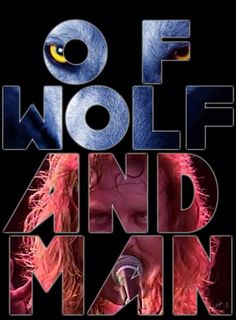 Metallica - of wolf and man