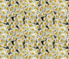 Daisy garden fabric by hannafate on Spoonflower - custom fabric