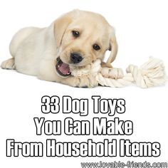 33 Dog Toys You Can Make From Household Items - Lovable Friends Diy Dog Toys, Pet Toys, Ewok, I Love Dogs, Puppy Love, Little Buddha, Dog Crafts, Dog Items, Animal Projects
