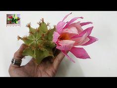 DIY - Craft tutorial How to make paper flower Cactus by crepe paper - Làm xương rồng giấy nhún - YouTube