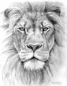 Billedresultat for lion head tattoo Lion Head Tattoos, Leo Tattoos, Bild Tattoos, Body Art Tattoos, Tattos, Lion Chest Tattoo, Tattoo Arm, Lion Tattoo Sleeves, Sleeve Tattoos