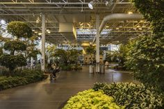 Devonian Gardens, Calgary, Alberta, Canada - Witold Skrypczak / Getty Images
