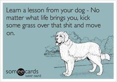 Very funny coming from a dog !!!