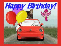 Cat Cats Happy Birthday Car Drive Drives Driving Sports Balloons Cake Funny LOL Animal Animals Icon Icons Emoticon Emoticons Animated Animation Animations Gif Gifs Have a Great Day photo BDdrivebyYankee.gif