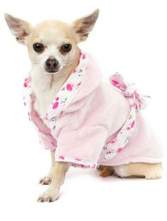 Chi dressing gown for sale in www.pixiesposhpets.co.uk